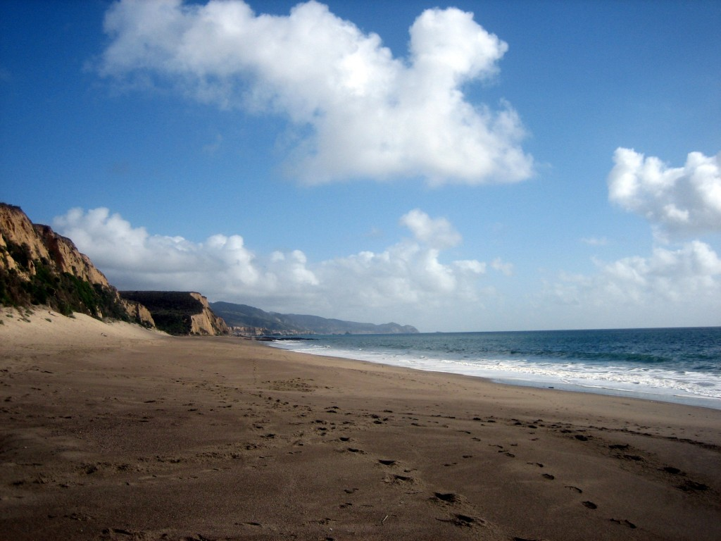 Beach at Point Reyes
